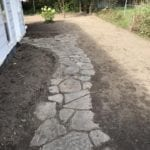 Pathway After Overgrowth removed