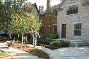 Image of Front of house landscaping service