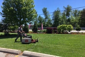 mike cutting a front lawn