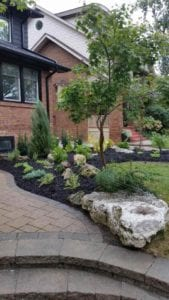 image of front complete garden